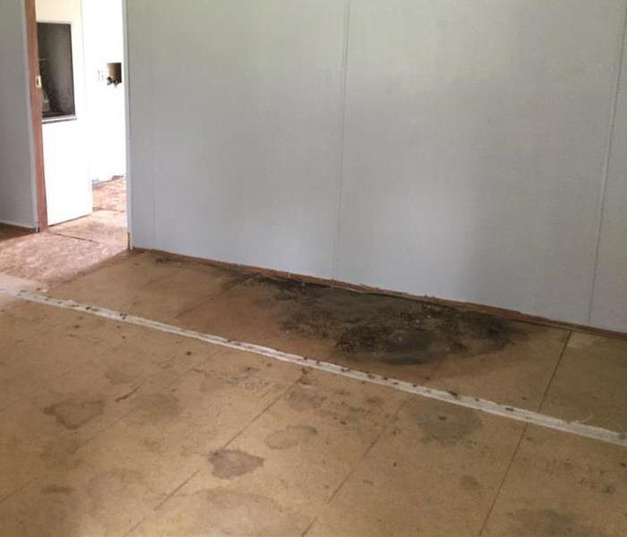 Residential Mold Damage  Before