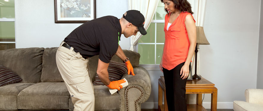 Richmond, KY carpet upholstery cleaning